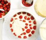 Bavarese di frutta allo yogurt